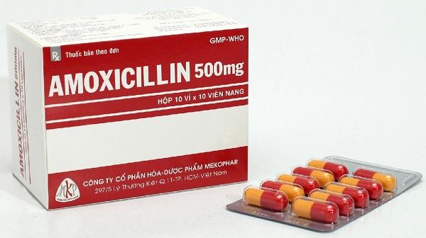 Những đối tượng cần thận trọng khi dùng thuốc kháng sinh Amoxicillin