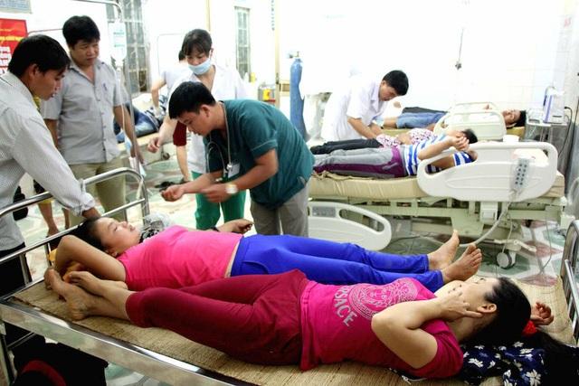 10 người ở Nghệ An suýt chết vì ngộ độc nấm rừng